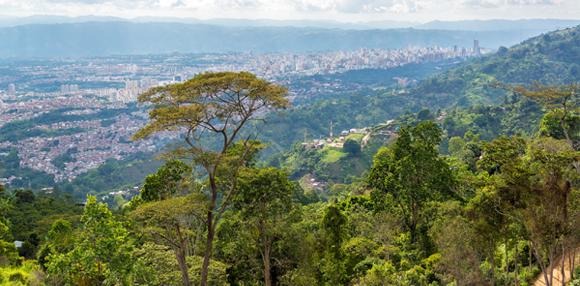 SantanderBucaramanga