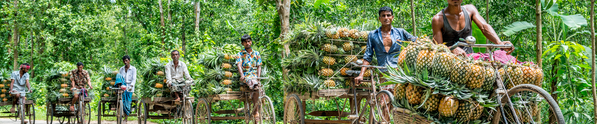Pinapple Sellers in Dhaka, Bangladesh