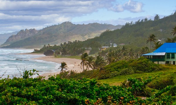 Coast of Barbados