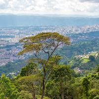 Santander/Bucaramanga