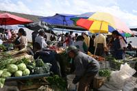 Expat Life in Ecuador