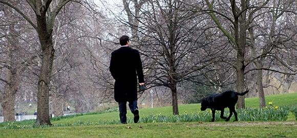 expat dog Hyde Park London