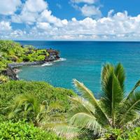 Hawaii Expat
