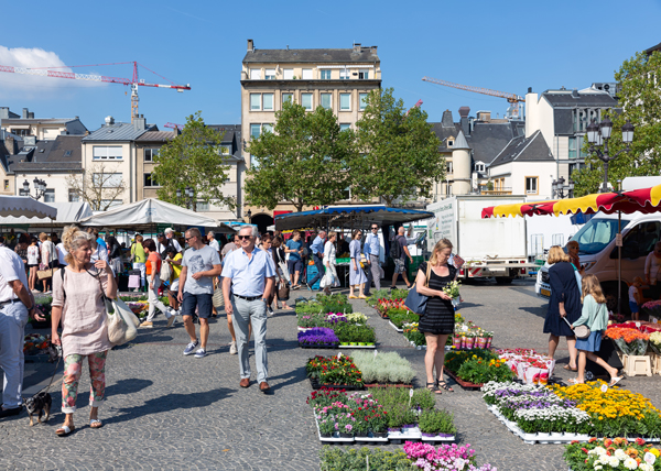 Flower Market in Luxembourg City