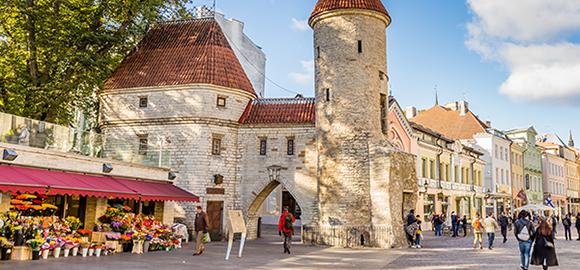 Moving to Estonia - Estonia's Digital Nomad Visa