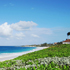 Pros-and-Cons-of-Living-in-The-Bahamas