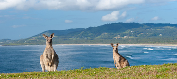 Repatriation to Australia - Top 10 Tips for Repatriation to Australia