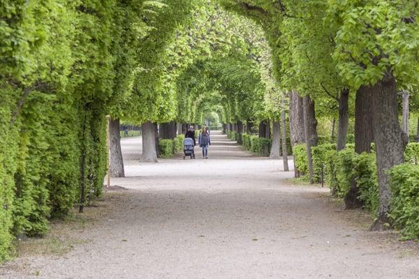 Gardens at Schonbrunn Palace in Vienna
