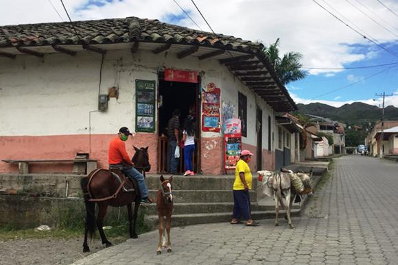 12 Tips for Living in Vilcabamba, Ecuador